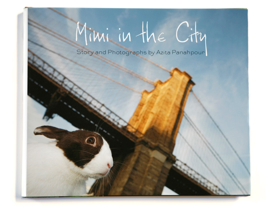 Mimi-book-cover.jpg