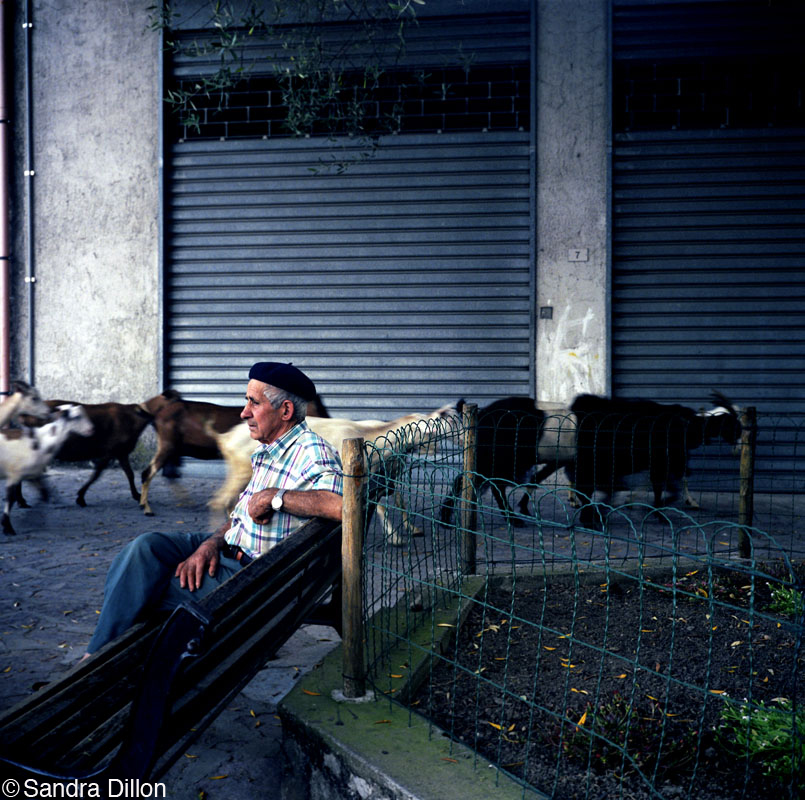 Old Man with Beret, San Nazario, Italy