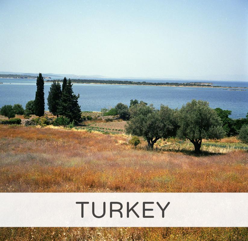 TURKEY_TITLE.jpg