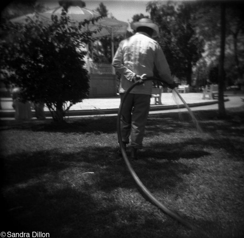 Gardener with Hose, Merida, Mexico