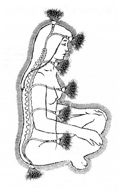 Contemporary (new age) depiction of chakras being rooted to the central channel (in this depiction it has been medicalized and is seen as synonymous with the cerebral spinal fluid).