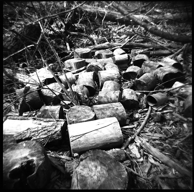 Logs | Saugerties, New York