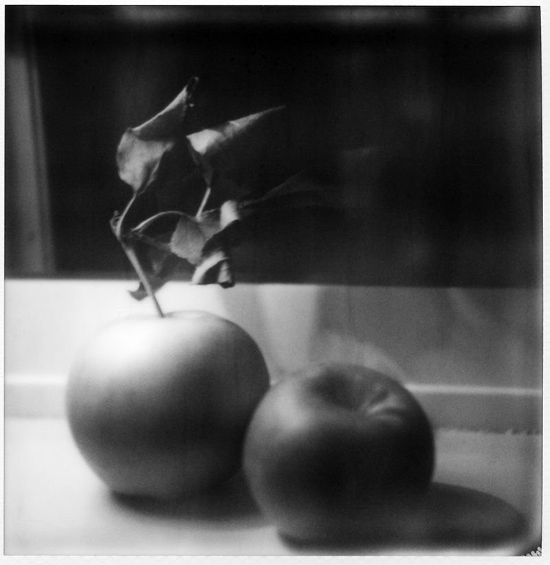 Apples | Polaroid SX-70