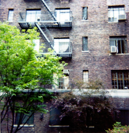 Apartment Building (from courtyard) | Morton Street, New York City