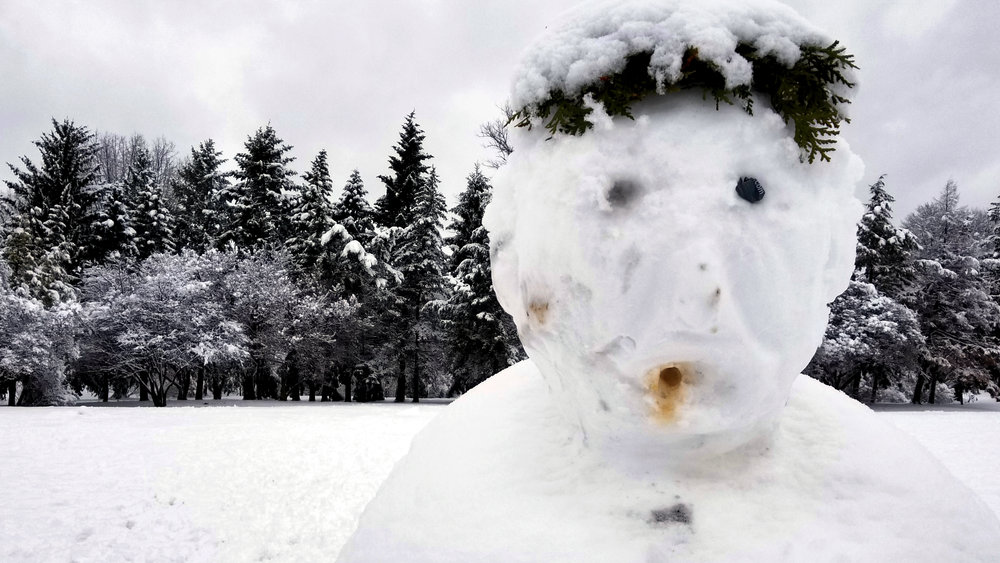 The Snowman | Washington Park, Albany NY