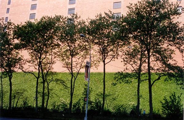 Back End of Tudor| United Nations Plaza, New York NY