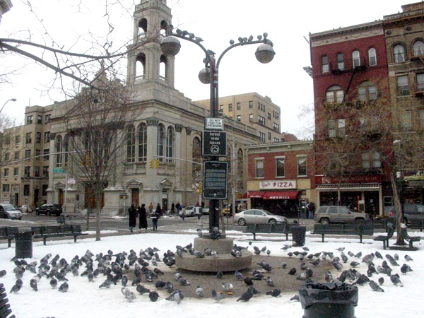 Pigeons in the Park | 6th Ave.