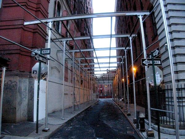 Cat Walk | Jersey Street