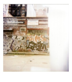 polaroid19.jpg