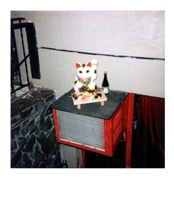 polaroid40.jpg