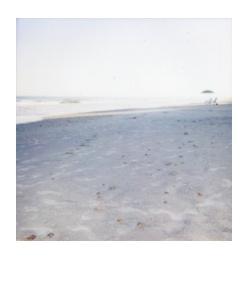 polaroid118.jpg