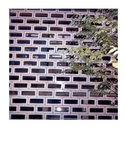 polaroid173.jpg
