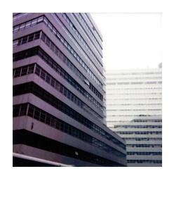 polaroid175.jpg