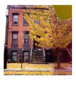 polaroid177.jpg