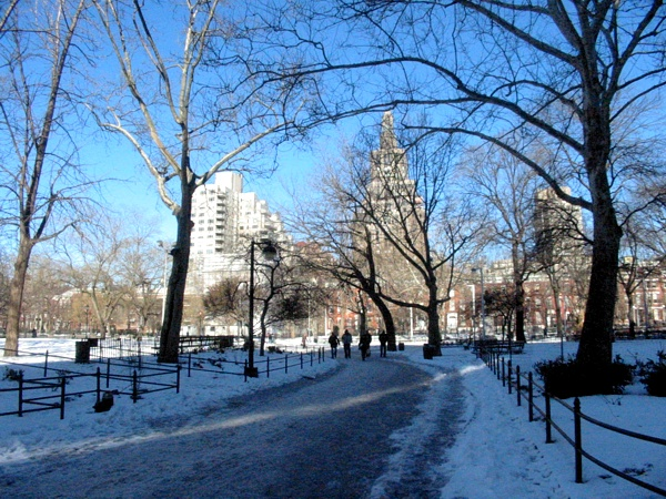 Blue Ice | Washington Square Park