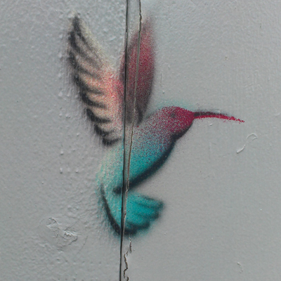 blog-hummingbird.jpg
