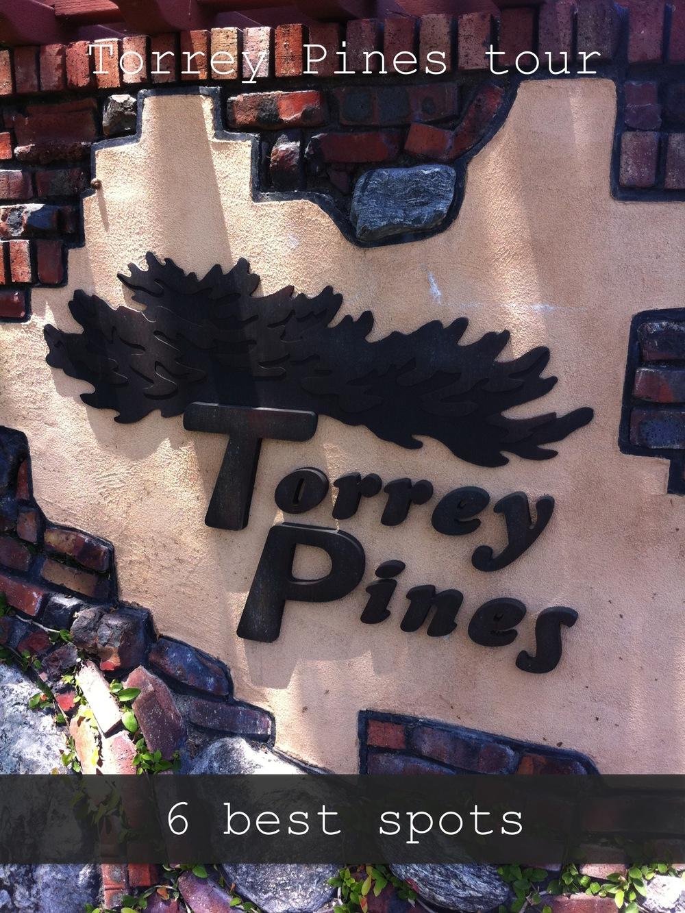 torrey pines tour tile.jpg