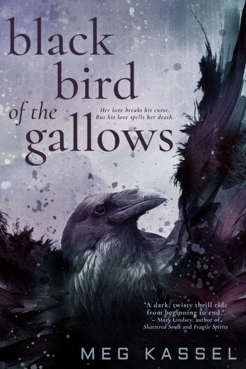 Black Bird of the Gallows by Meg Kassel Book Cover