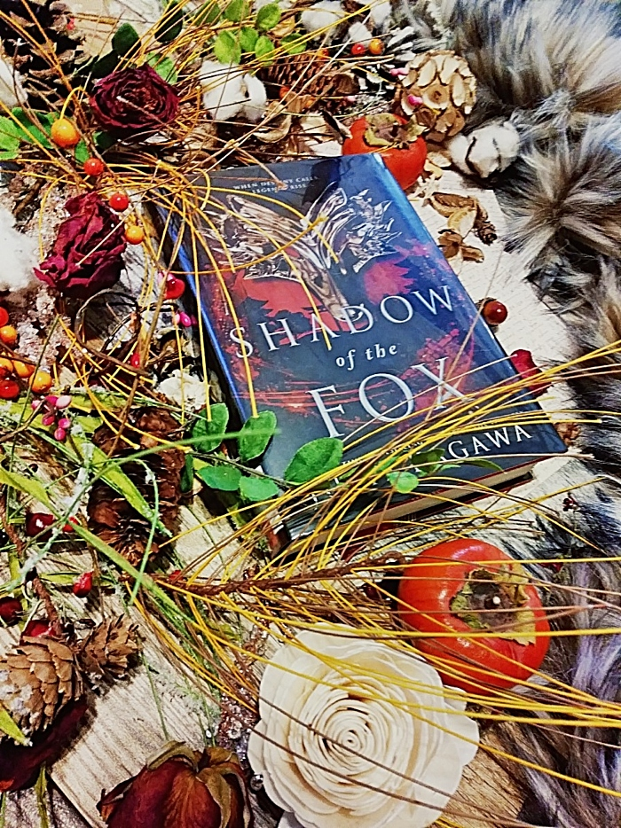 Shadow of the Fox by Julie Kagawa - image taken by Book Swoon