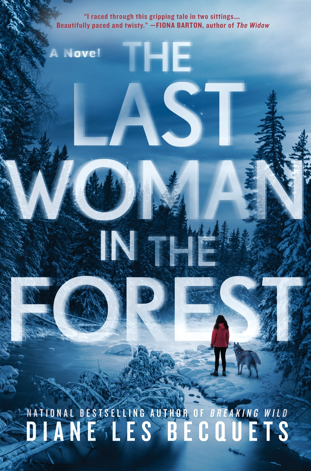The Last Woman in the Forest by Diane Les Becquets Book Cover