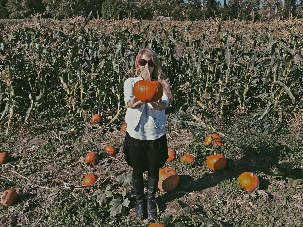 pumpkin laura2.jpg
