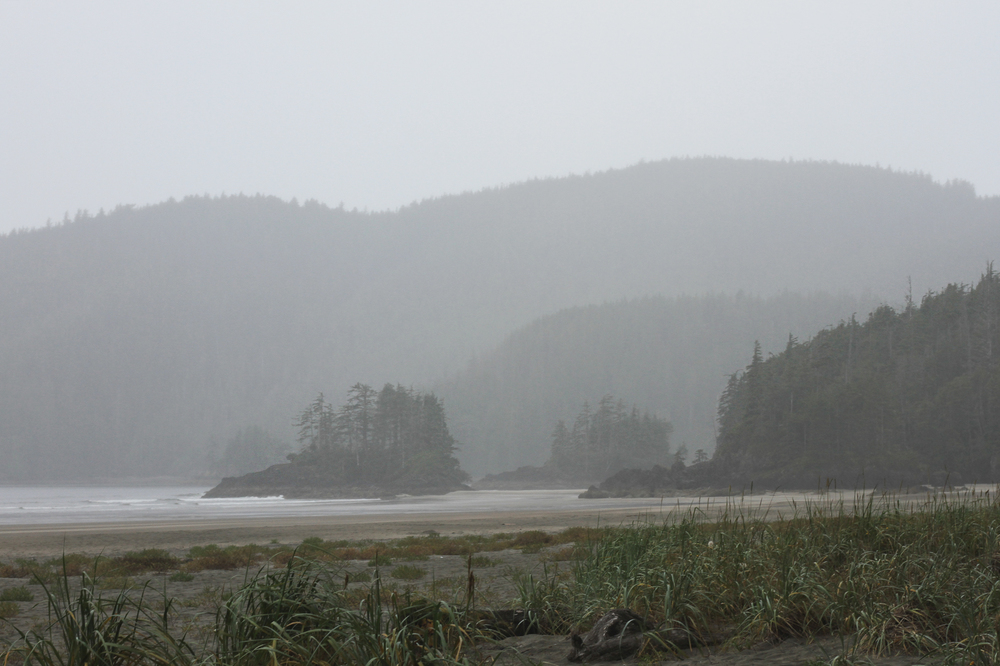 Misty San Josef Bay