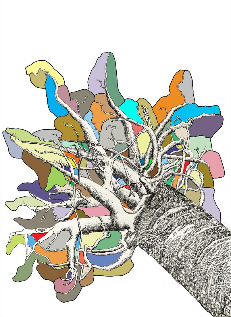 tree_colorback_web.jpg