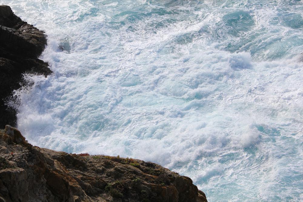photo_ocean_web.jpg