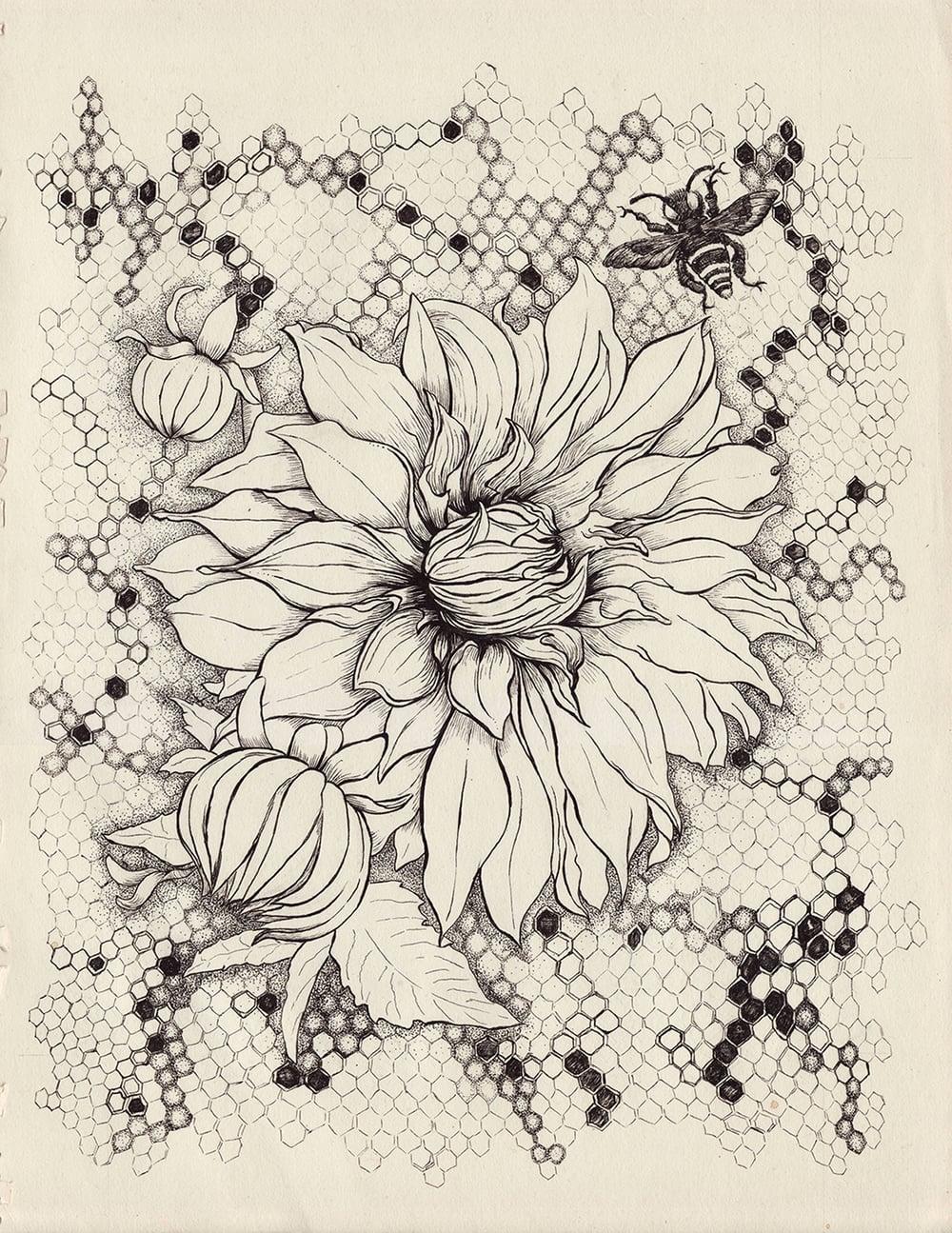 "pen & ink on paper  11"" x 14"""