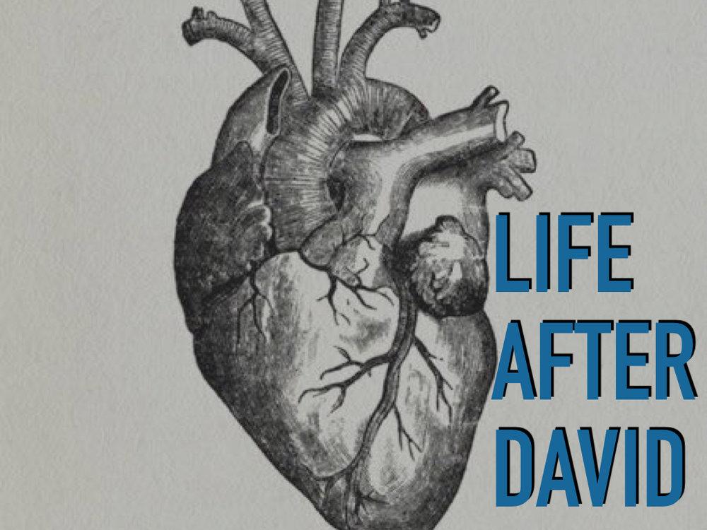 life after David 3.001.jpeg