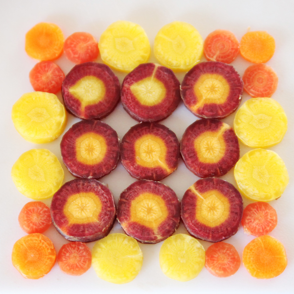 rainbow_carrots_quilt.jpg