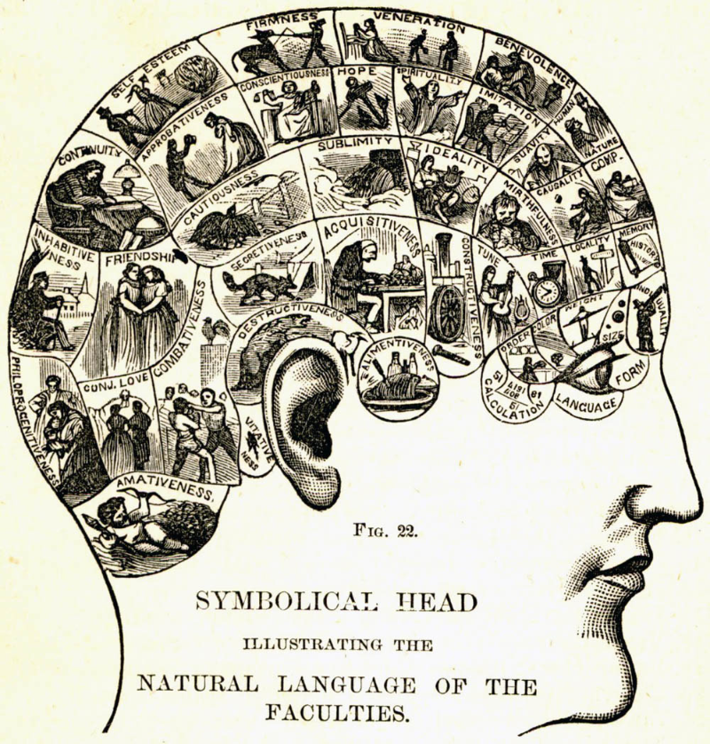 "Samuel Wells, ""Symbolical Head,"" How To Read Character: A New Illustrated Handbook of Phrenology and Physiology  (London: Vickers, 1860) p. 39."