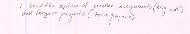 I liked the system of smaller assignments (Blog work) and larger projects (term papers).
