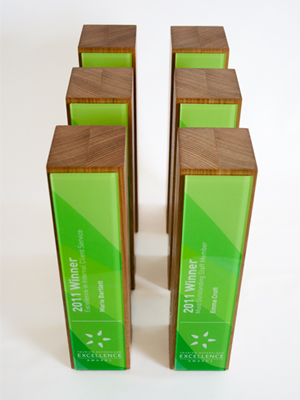 modern trophy design, sustainable awards, eco awards, sustainable trophies, eco trophies, environmentally friendly awards and trophies, modern trophy, modern trophies, custom trophies, custom trophy