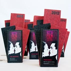 modern echo panel award