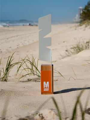 sculpture award - modern design