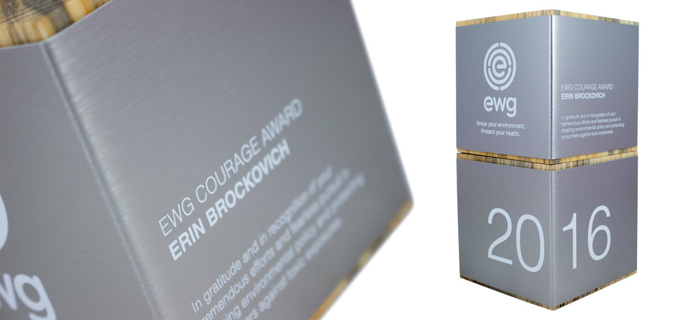 cube wood trophy block eco award erin brockovich.jpg