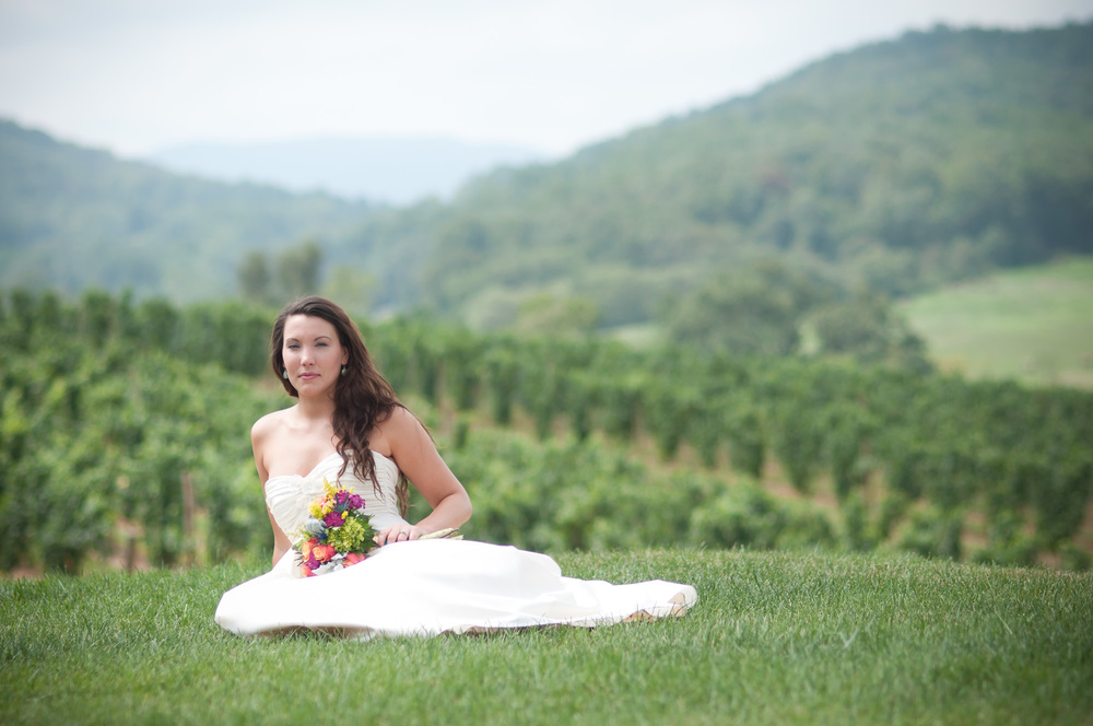 pippin hill bridal portrait,jpg