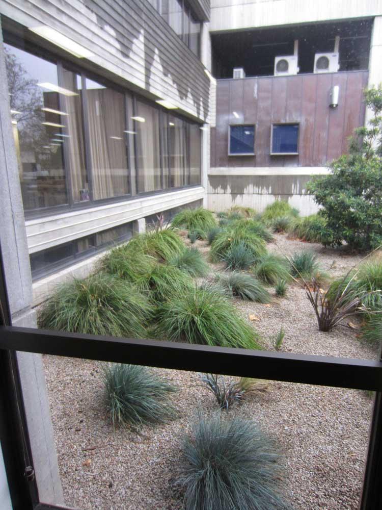 outside-courtyard.jpg