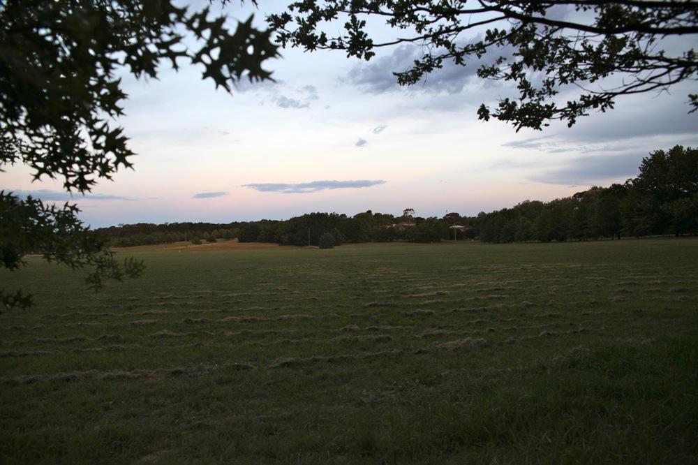 feb10 sunset field.jpg