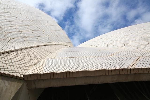 20123 opera house detail tiles.jpg