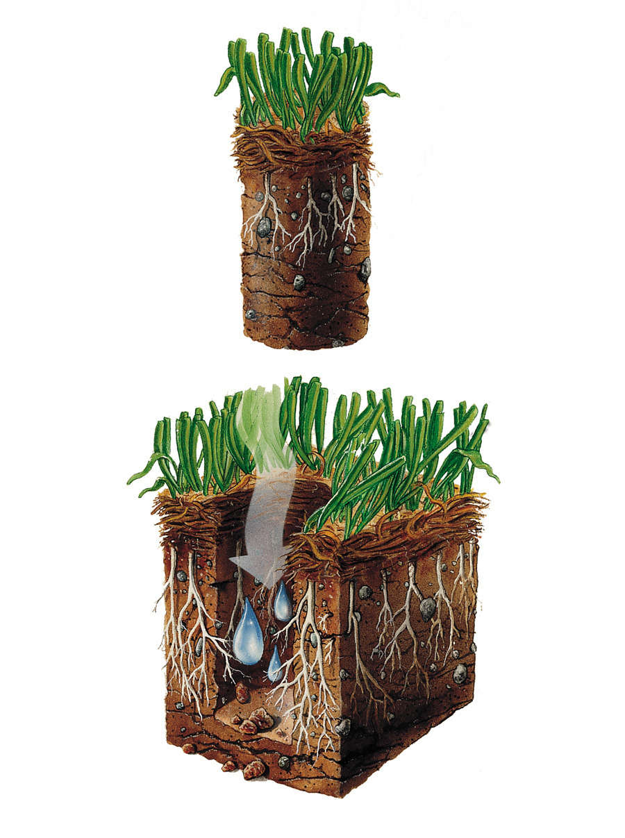 Aeration-Picture.jpg