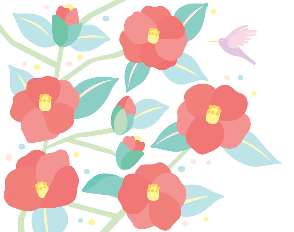 Japanese camellia
