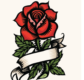 Rose Flash, Q. Cassetti, 2014 pen and ink, digitally colored.