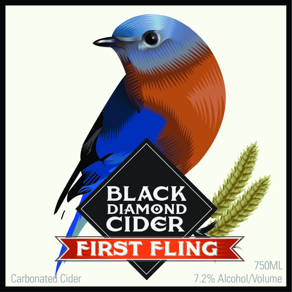 FIRSTFLING2-02.jpg