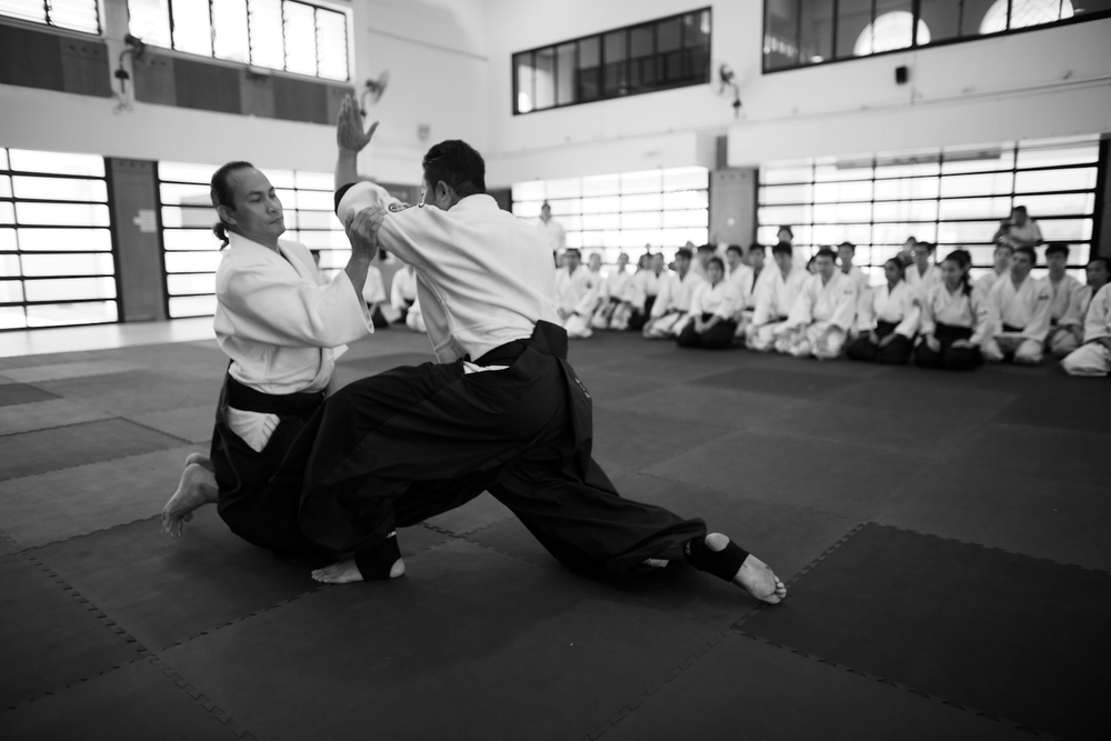 1st Aiki Friends Combined Training - Singapore