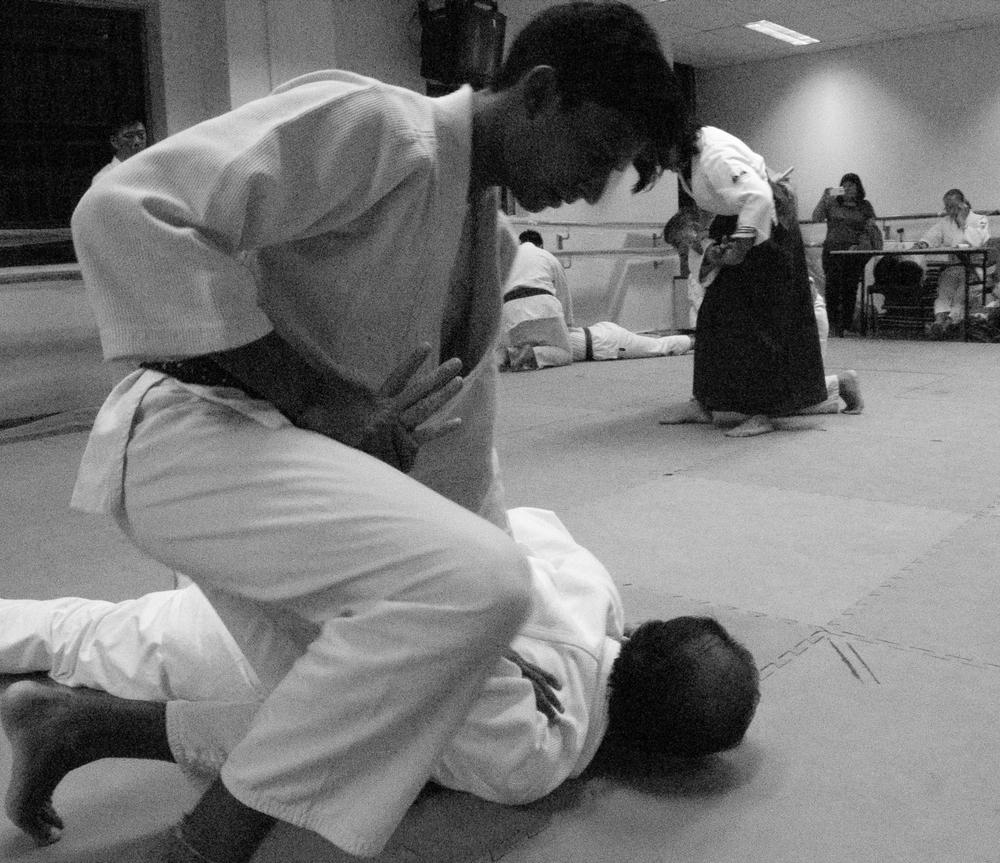 Aikido Kenshin-Kai