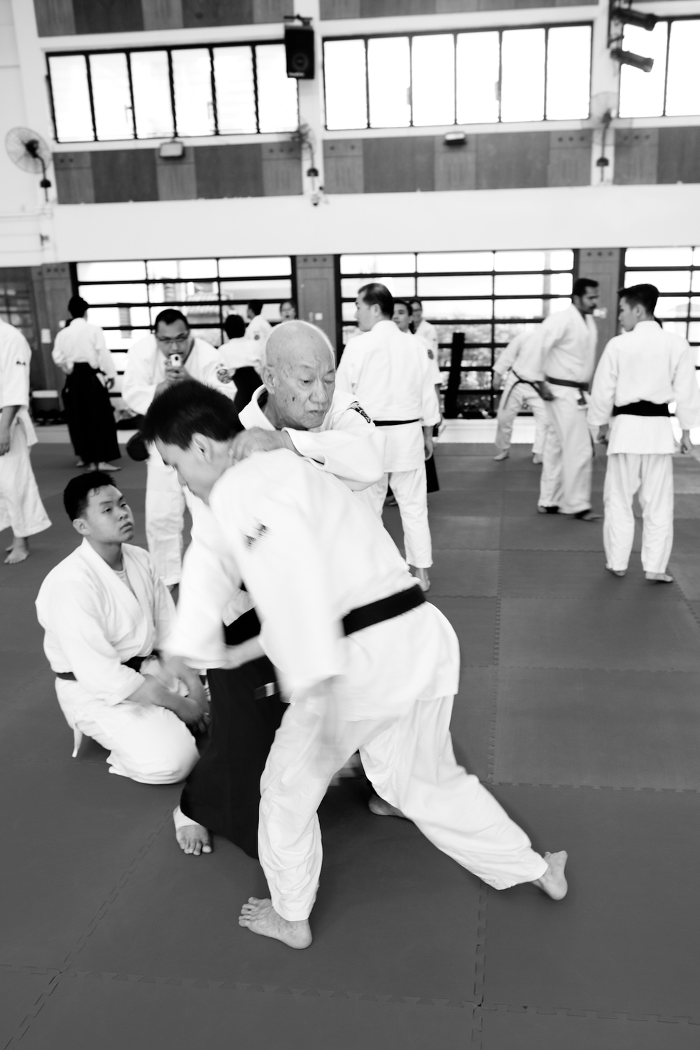 Aiki Friends Combined Training 2014 - Singapore