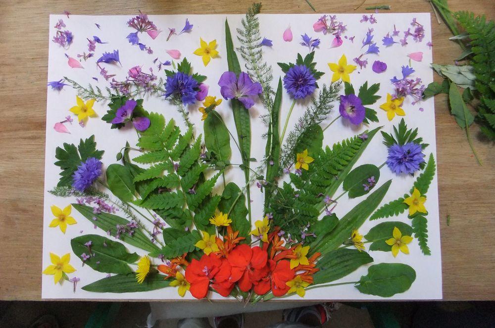 afh flowers 4.jpg