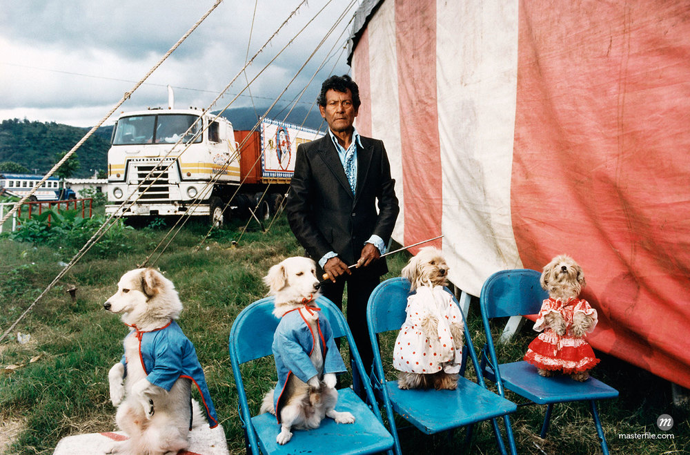 Dog Trainer and Dogs at Circus in Guatemala @ Russell Monk / Masterfile